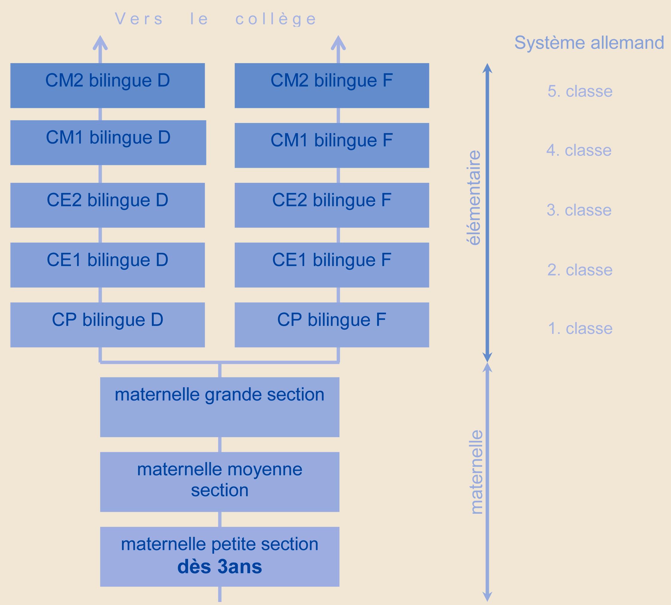 pedagogie_primaire_graphique_parcours